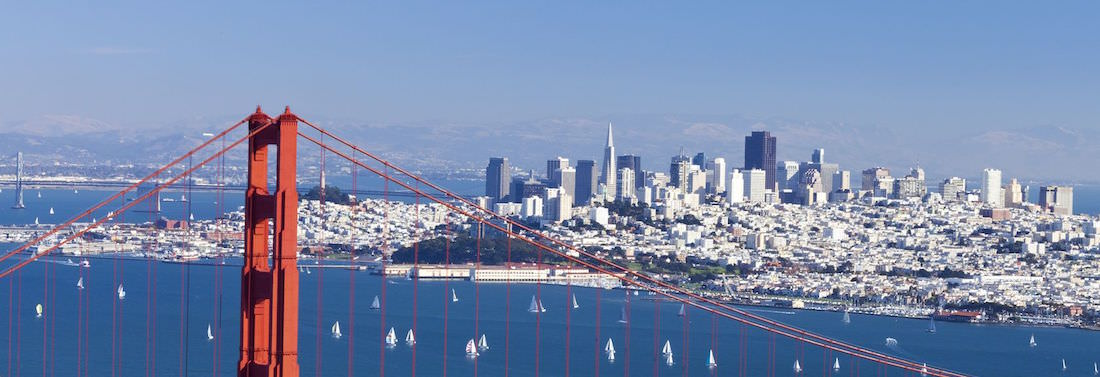 Bay Area Consultants